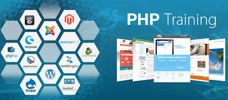 6 months php industrial training in chandigarh